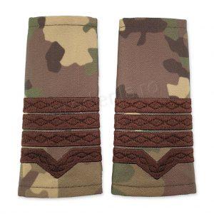 Grade militare maistru militar clasa 2 combat forte terestre