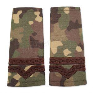 Grade militare maistru militar clasa 4 combat forte terestre