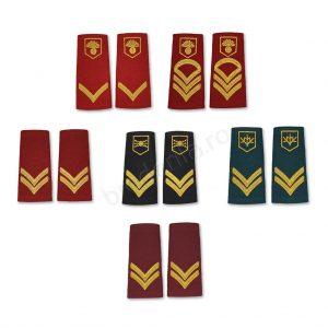 Banner grade soldati profesionisti oras mapn
